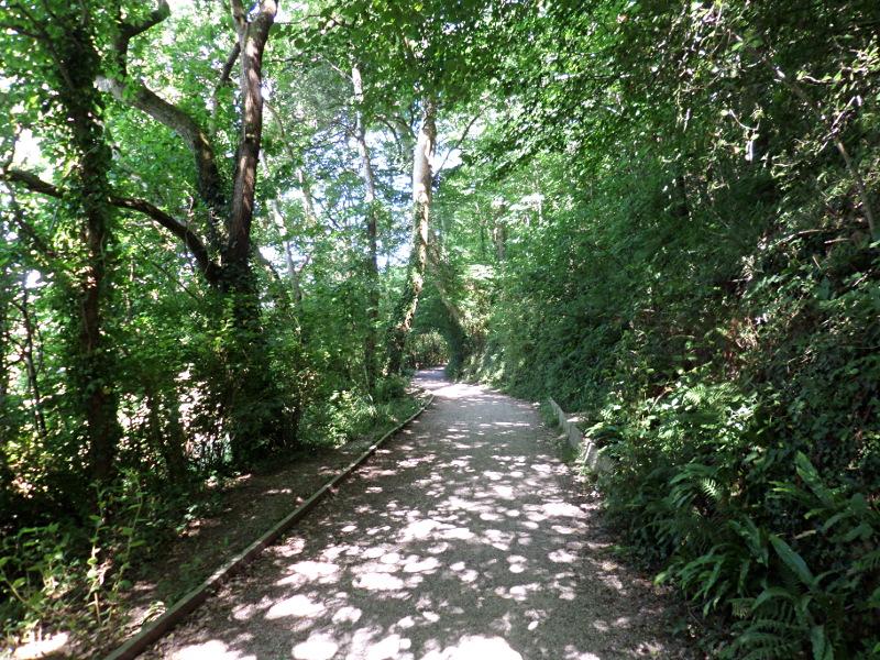 Fußweg von Dartington nach Totnes