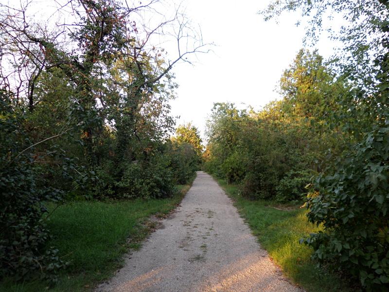 Weg im Friedhof