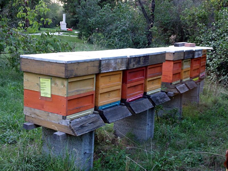 Bienenstöcke und Mozartgrab
