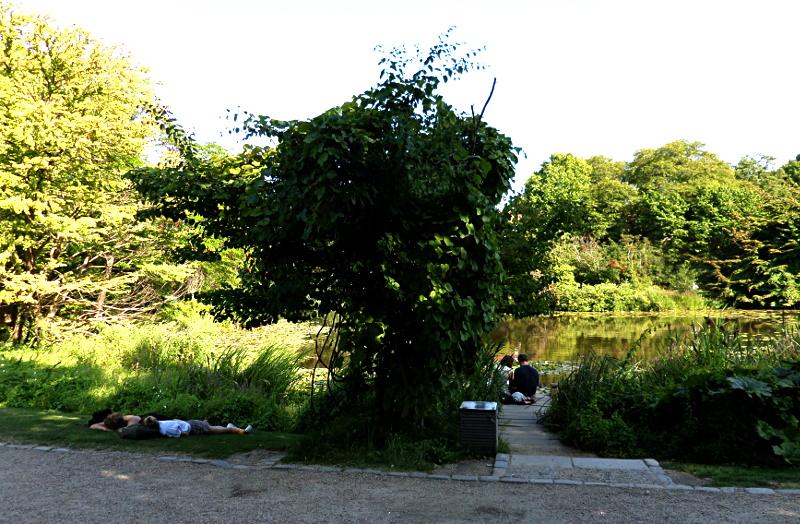 Liebespaar im Botanischen Garten