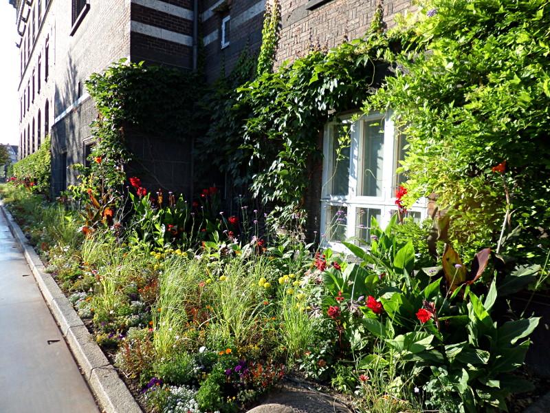 Blumenbeet ums Kopenhagener Rathaus