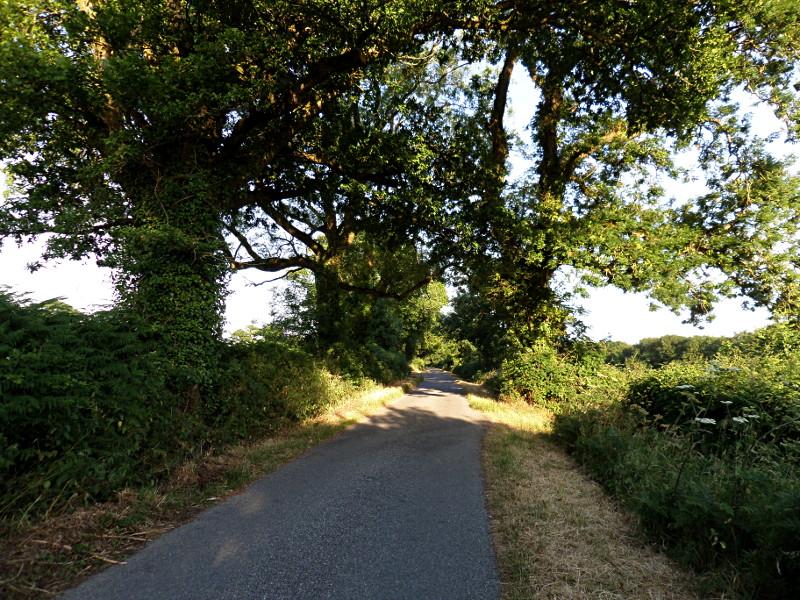 Der Weg nach Monkton Wyld