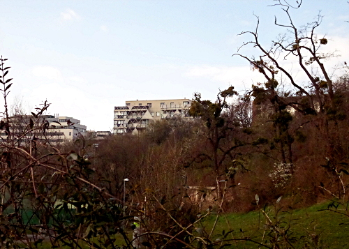 Stadtwildnis_Neu-Marx