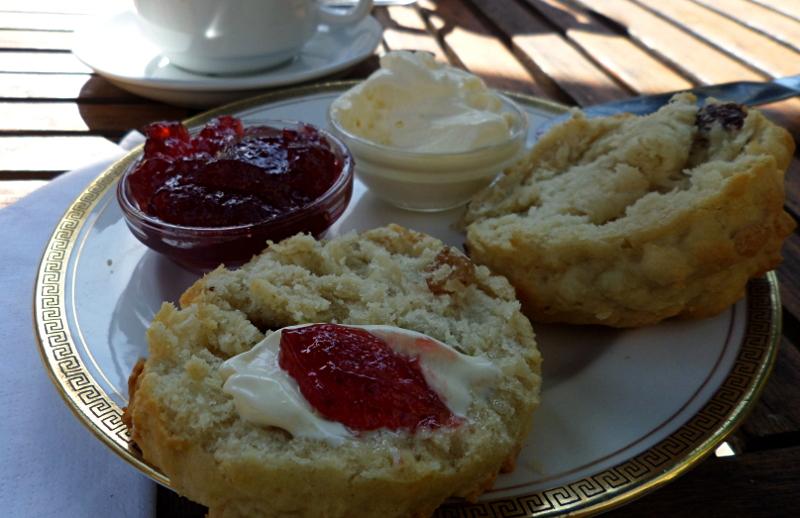 Scones mit Glotted Cream und Jam im Tearoom Abbotsbury