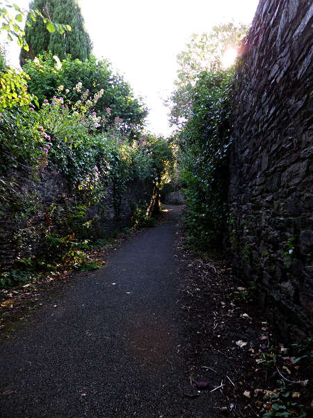 Am Garden Trail in Totnes
